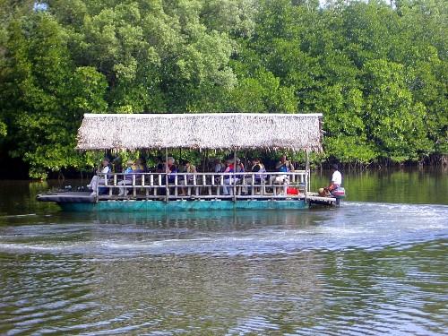 river travel in Kota Kinabalu
