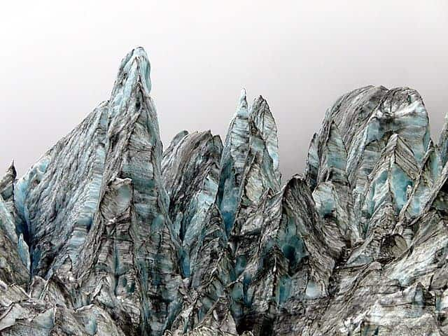 photograph-closeup-fox-glacier-new-zealand