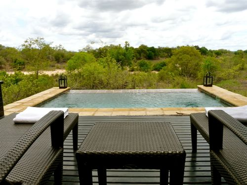 Every villa at Ivory Lodge has its own plunge pool. Luxury on a South African safari!