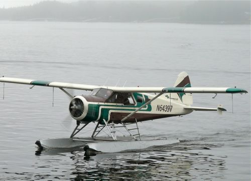Float Plane tour of Misty Fjords