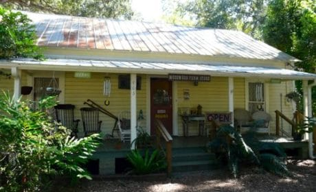 Mosswood Farm Store in Micanopy, Florida
