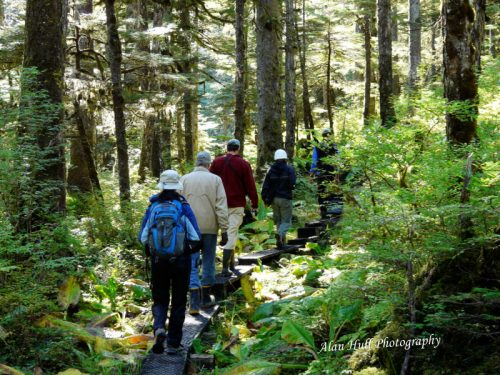 Hikers on an Alaska rainforest hike.