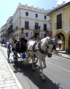 spain-charming-ronda-carriage-ride