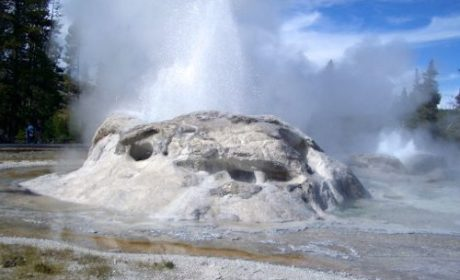 A geyser boils over in Yellowstone National Park