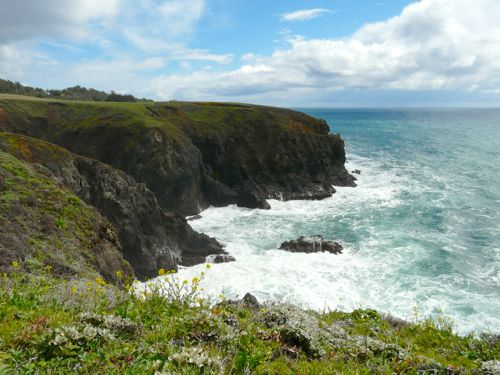 Saturday's scene: on the way to Mendocino