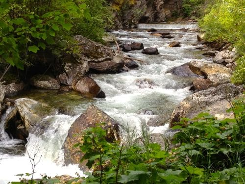 Saturday's scene: cooling off on the Kootenai Creek Trail