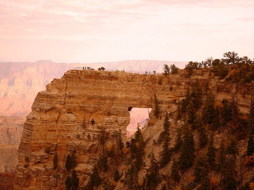 Grand Canyon's North Rim