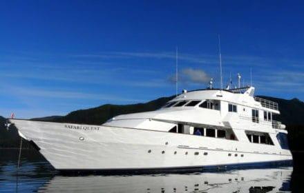 american-safari-cruise-alaska