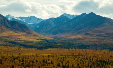 Fall on the Glenn Highway in Alaska