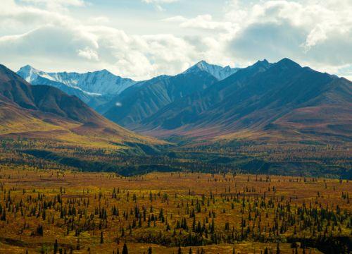 Fall on the Glenn Highway in Alaska
