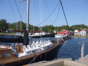Amoeba sailboat