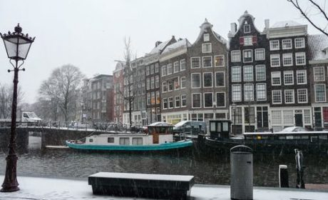Jordaan District Walking Tour With AmaWaterways