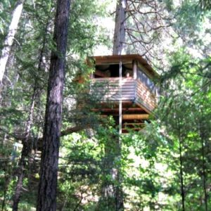 Lilly Pad Treehouse