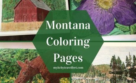 downloadable Montana coloring pages