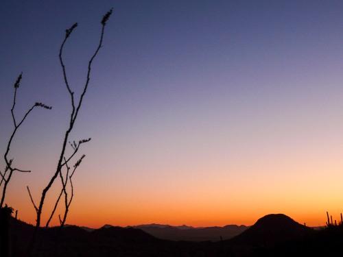 My Top 3 Tucson Travel Secrets