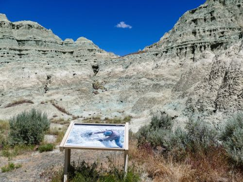 John Day Fossil Beds in eastern Oregon is a fun boomer travel adventure