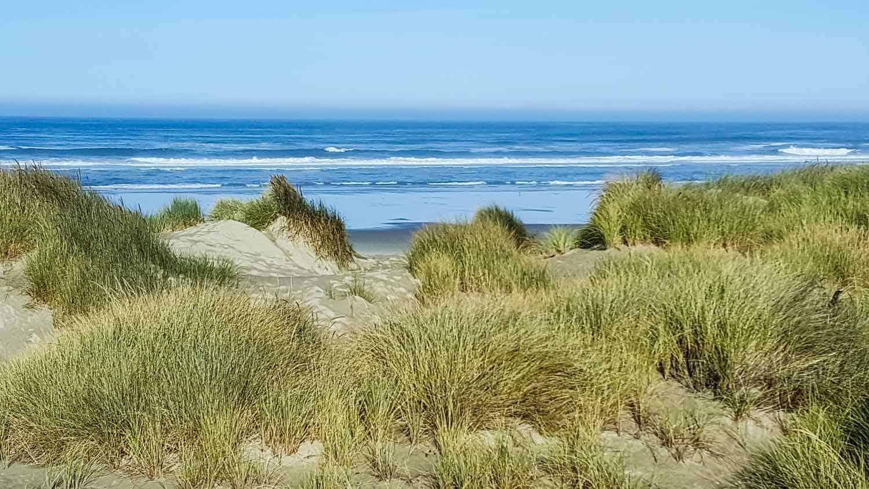 sand dunes in front of the ocean