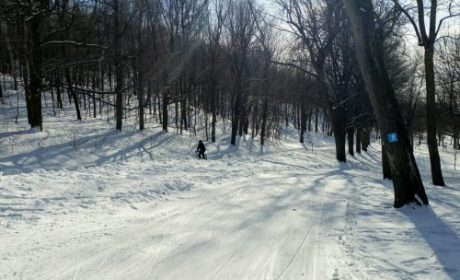 Ski trails on Mont Royal