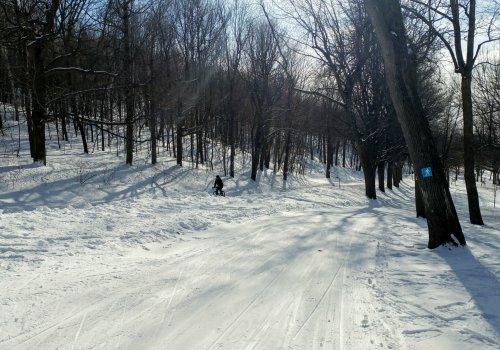 Ski trails on Mont Royal