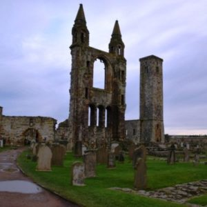 ruins of old cathedral surrounded by green grass