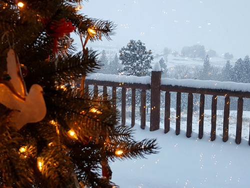 christmas tree in front of snow-covered porch and landscape