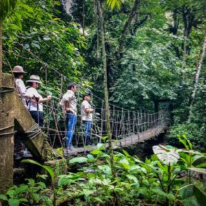 Panama vacation ideas include hiking in the jungle