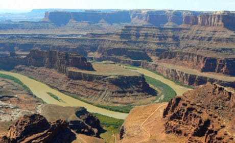Muddy river winding through a canyon surrounded by cliffs at Dead Horse Point Overlook
