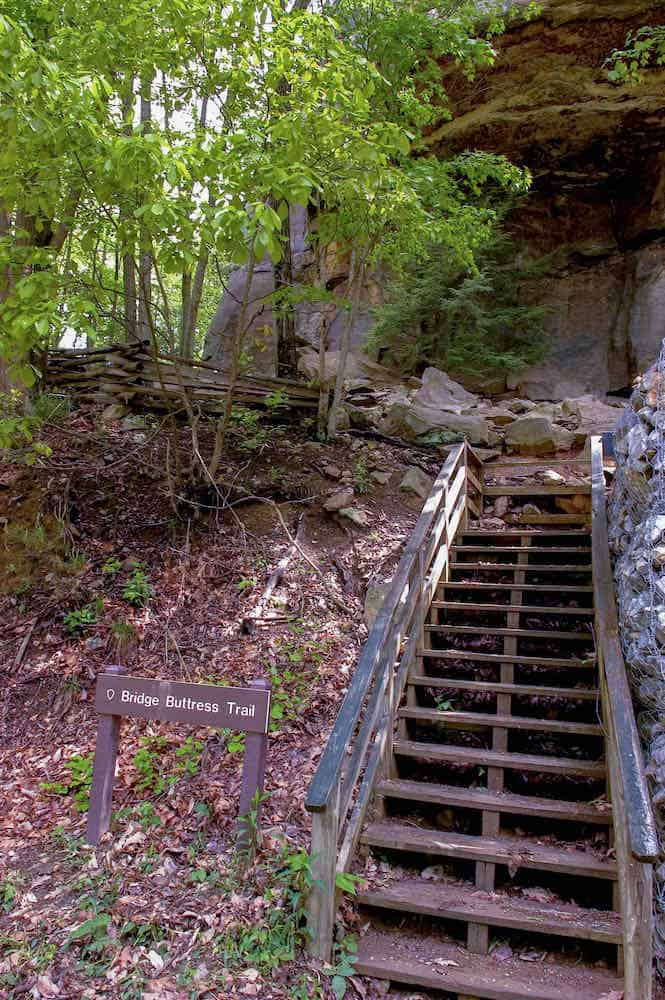 Wooden stairs climb up a trail next to a rock climbing wall