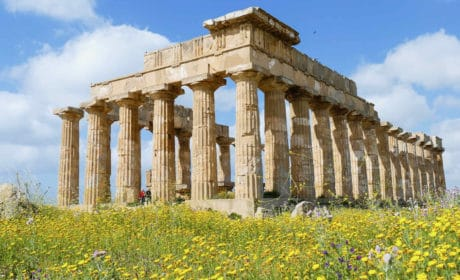 Greek columned ruins standing in a field of yellow flowers