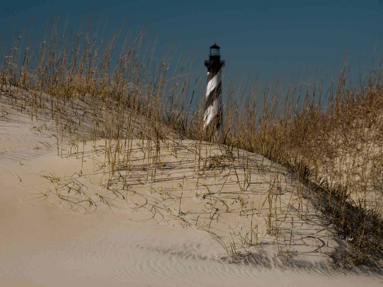 Black and white stripped lighthouse surrounded by grasses and sand dunes.